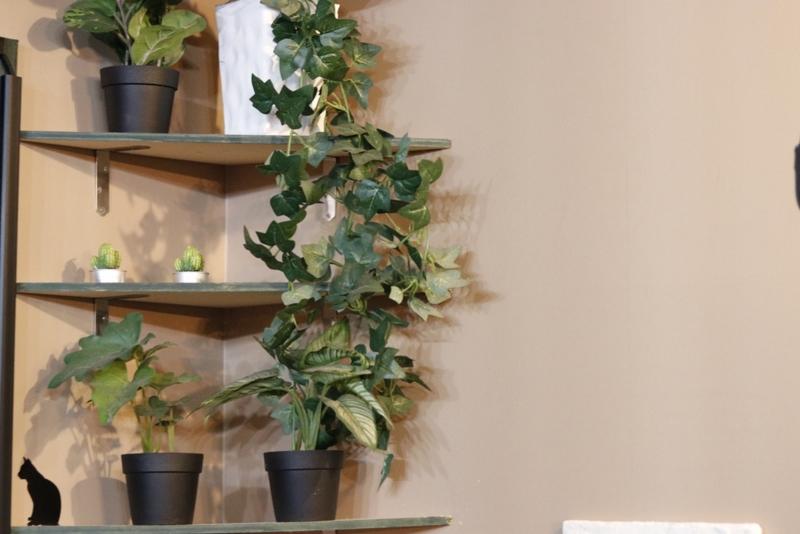 美容室の装飾 緑ver のフリー写真素材 ニューファクトリー